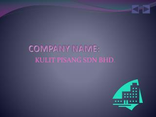 COMPANY NAME: