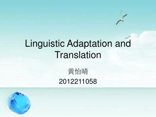 Linguistic Adaptation and Translation