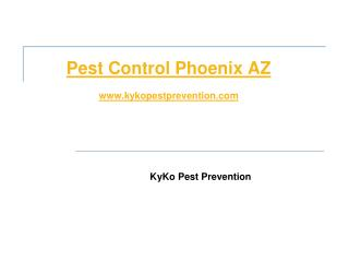 KyKo Pest Prevention
