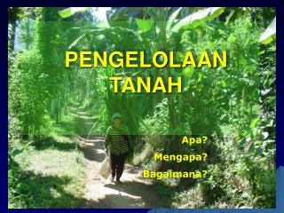 PENGELOLAAN TANAH