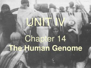 UNIT IV Chapter 14                The Human Genome