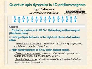 Quantum spin dynamics in 1D antiferromagnets.