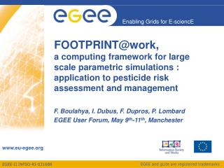 F. Boulahya, I. Dubus, F. Dupros, P. Lombard EGEE User Forum, May 9 th -11 th , Manchester
