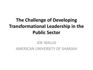 The Challenge of Developing Transformational Leadership in the Public Sector