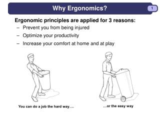 Why Ergonomics?