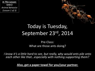 Today is Tuesday, September 23 rd , 2014