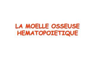 LA MOELLE OSSEUSE HEMATOPOIETIQUE