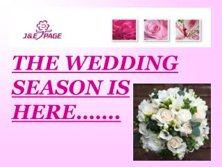 THE WEDDING SEASON IS HERE…….