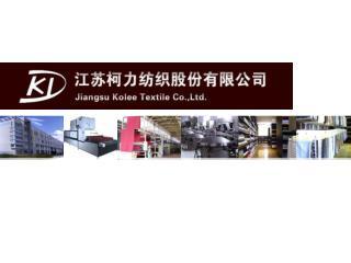 Presentación de la empresa Jie Shen
