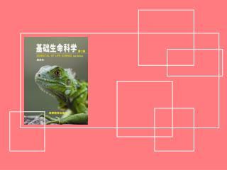 第十章 生物与环境