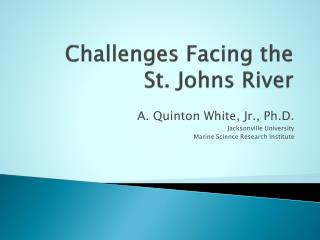 Challenges Facing the  St. Johns River