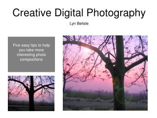 Creative Digital Photography Lyn Belisle