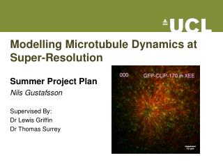 Modelling Microtubule Dynamics at Super-Resolution