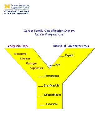 Career Family Classification System  Career Progressions
