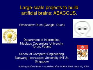 Large-scale projects to build artificial brains :  ABACCUS.