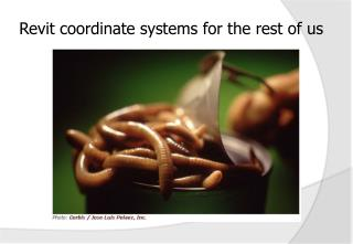 Revit coordinate systems for the rest of us