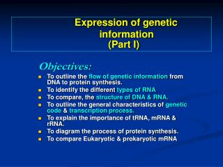 Objectives: To outline the  flow of genetic information  from DNA to protein synthesis.