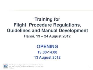 Training for Flight Procedure Regulations, Guidelines and Manual Development