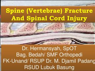 Spine (Vertebrae) Fracture And Spinal Cord Injury