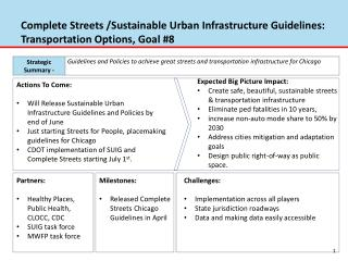 Complete Streets /Sustainable Urban Infrastructure Guidelines:   Transportation Options, Goal #8