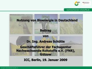 Nutzung von Bioenergie in Deutschland