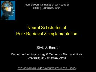 Neural Substrates of  Rule Retrieval & Implementation