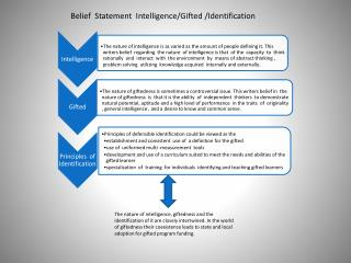 Belief  Statement  Intelligence/Gifted /Identification