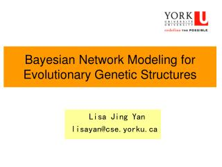 Bayesian Network Modeling for Evolutionary Genetic Structures