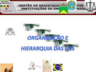 ORGANIZAÇÃO E  HIERARQUIA DAS LEIS