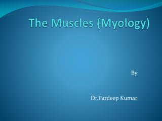 The Muscles ( Myology )