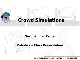 Crowd Simulations