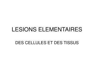 LESIONS ELEMENTAIRES