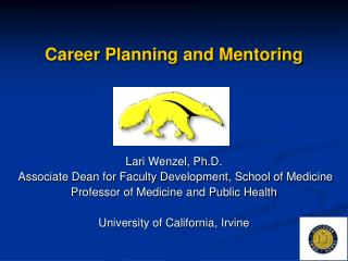 Career Planning and Mentoring