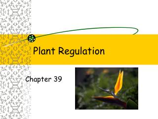 Plant Regulation