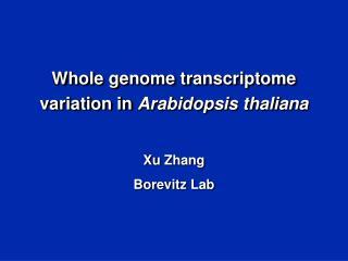 Whole genome transcriptome variation in Arabidopsis thaliana Xu Zhang Borevitz Lab