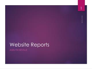 Website Reports