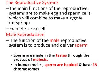 The Reproductive Systems :
