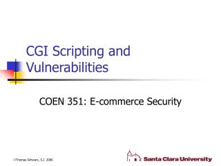 CGI Scripting and Vulnerabilities
