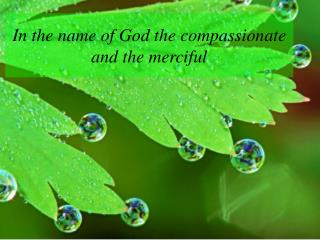 In the name of God the compassionate and the merciful