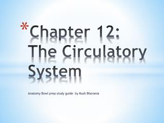 Chapter 12: The Circulatory System