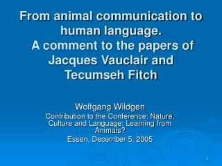 From animal communication to human language.  A comment to the papers of Jacques Vauclair and Tecumseh Fitch