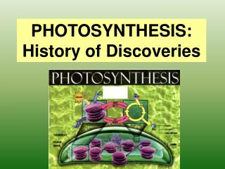 PHOTOSYNTHESIS: History of Discoveries