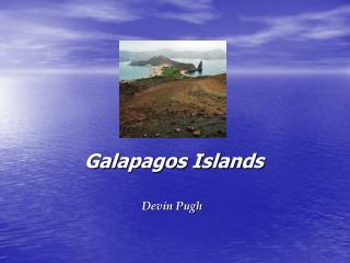 Galapagos Islands Devin Pugh
