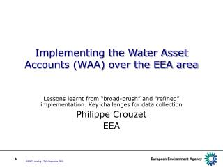 Implementing the Water Asset Accounts (WAA) over the EEA area