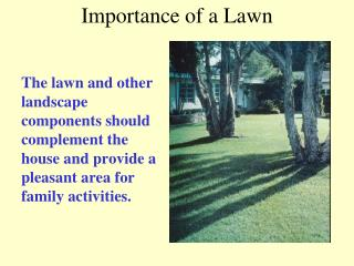 Importance of a Lawn