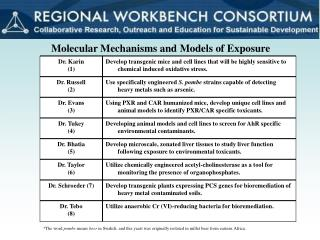 Molecular Mechanisms and Models of Exposure