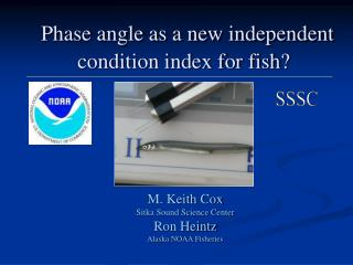 Phase angle as a new independent condition index for fish?
