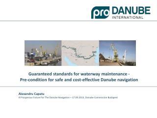 What is Pro Danube International?