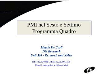 PMI nel Sesto e Settimo Programma Quadro