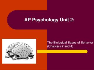AP Psychology Unit 2: